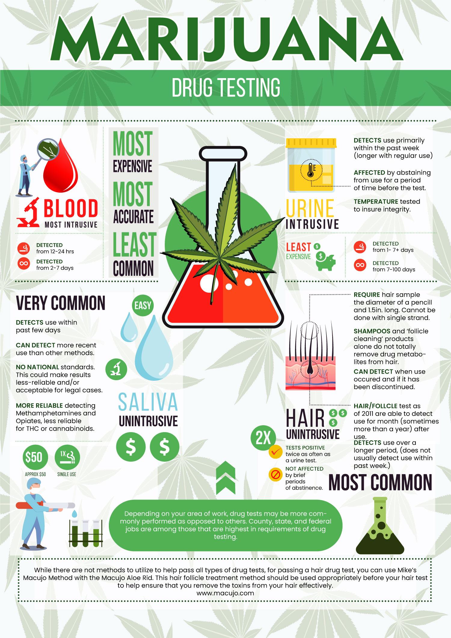 marijuana drug testing facts