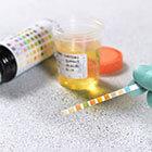 Urine-drug-test-products
